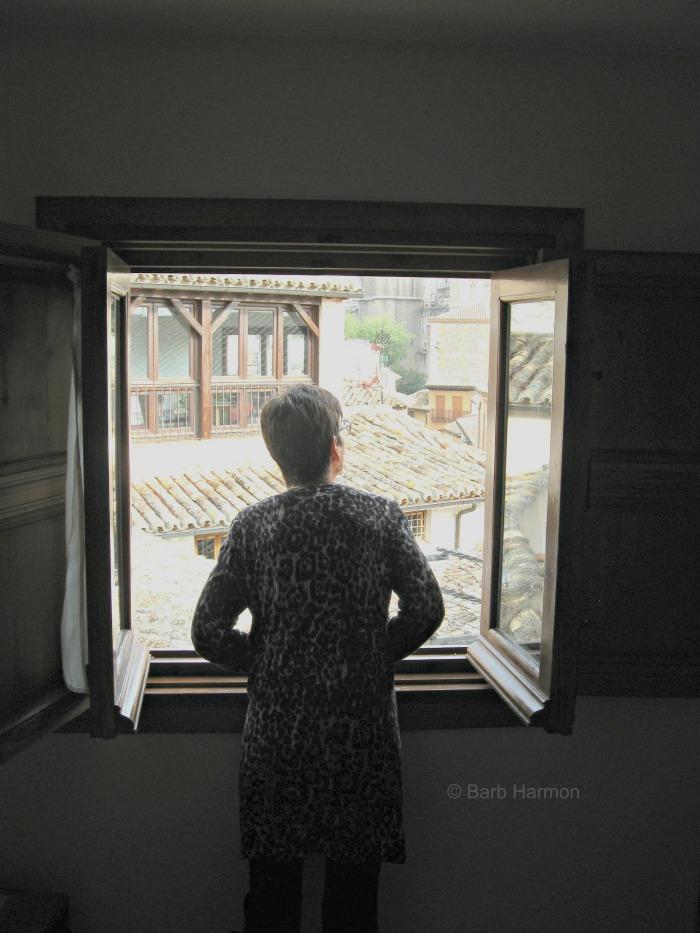 windowtoldeo700x
