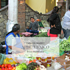 If it's Wednesday, it must be Tianguis in Ajijic